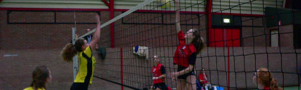 sport - Volleybalvereniging Nijeveen